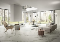 Calacatta Light Marble Infinity Tiles