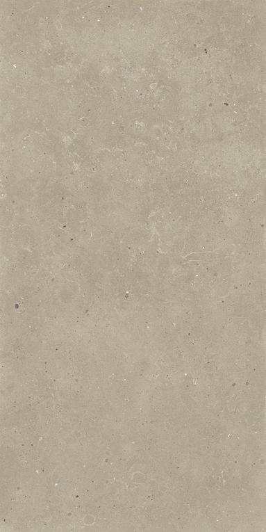 Quarry Limestone Effect Tiles _ Magny _8_