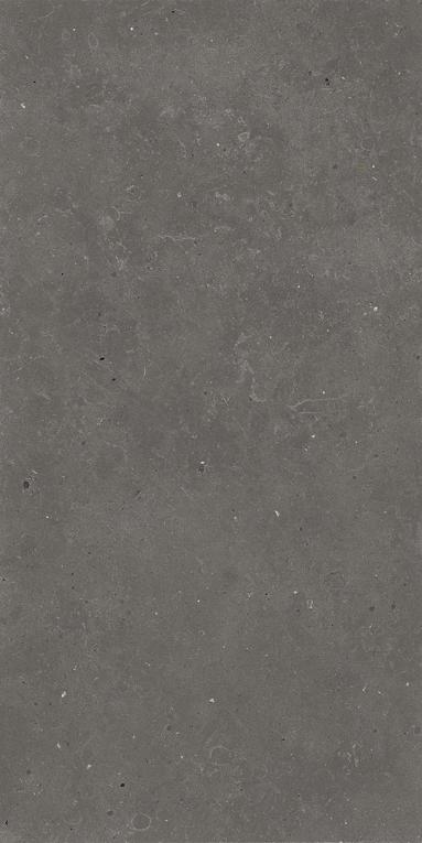 Quarry Limestone Effect Tiles _ Fossil _9_